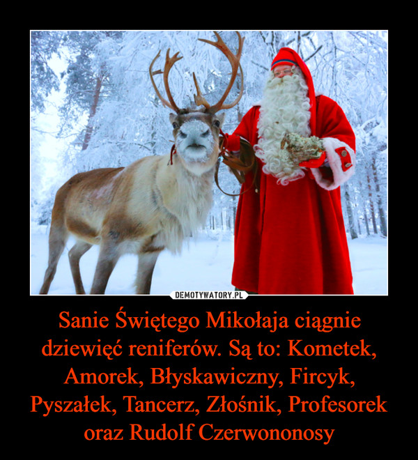 Sanie Świętego Mikołaja ciągnie dziewięć reniferów. Są to: Kometek, Amorek, Błyskawiczny, Fircyk, Pyszałek, Tancerz, Złośnik, Profesorek oraz Rudolf Czerwononosy –