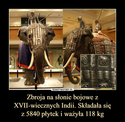 Zbroja na słonie bojowe z XVII-wiecznych Indii. Składała się z 5840 płytek i ważyła 118 kg