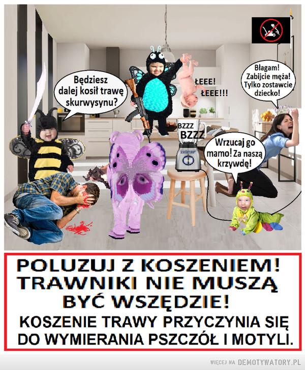 Państwo Łąkowe - Wielki Terror –