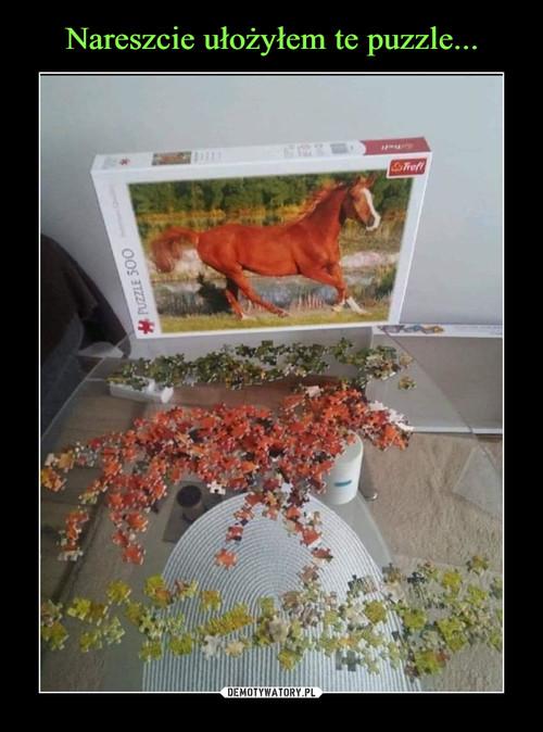 Nareszcie ułożyłem te puzzle...