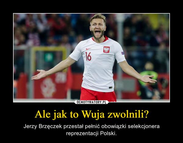 Ale jak to Wuja zwolnili? – Jerzy Brzęczek przestał pełnić obowiązki selekcjonera reprezentacji Polski.