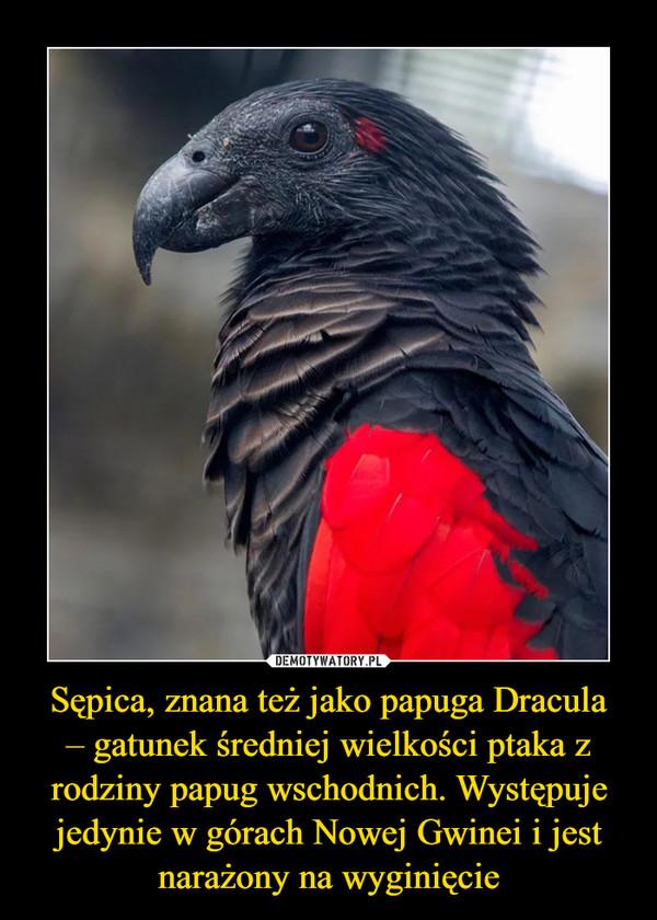 [Obrazek: 1611125350_4f04po_600.jpg]