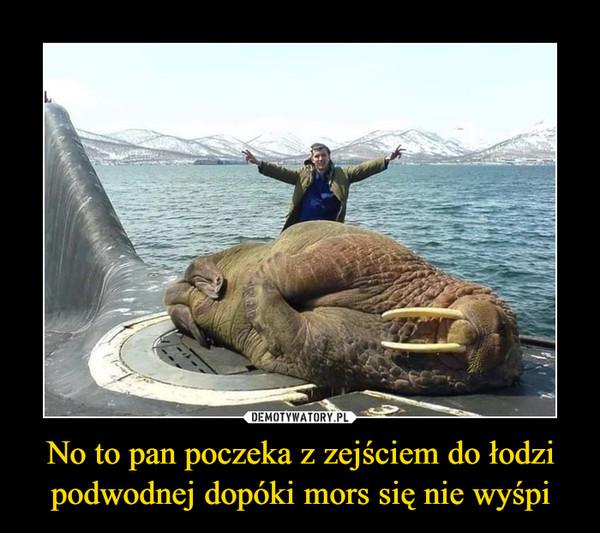 No to pan poczeka z zejściem do łodzi podwodnej dopóki mors się nie wyśpi –