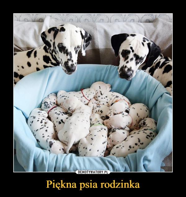 Piękna psia rodzinka –