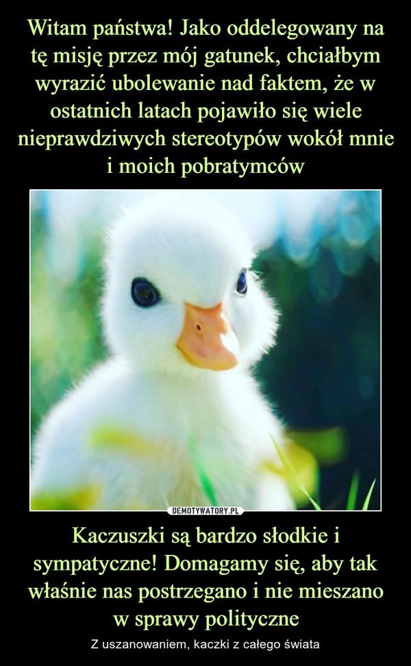 Kaczuszki są bardzo słodkie i sympatyczne! Domagamy się, aby tak właśnie nas postrzegano i nie mieszano w sprawy polityczne – Z uszanowaniem, kaczki z całego świata