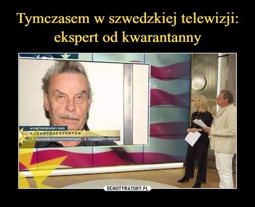 Tymczasem w szwedzkiej telewizji: ekspert od kwarantanny