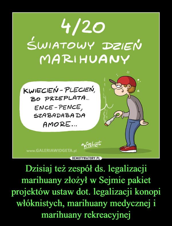 Dzisiaj też zespół ds. legalizacji marihuany złożył w Sejmie pakiet projektów ustaw dot. legalizacji konopi włóknistych, marihuany medycznej i marihuany rekreacyjnej –