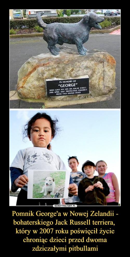 Pomnik George'a w Nowej Zelandii - bohaterskiego Jack Russell terriera,  który w 2007 roku poświęcił życie chroniąc dzieci przed dwoma zdziczałymi pitbullami