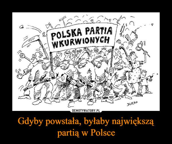 Gdyby powstała, byłaby największą partią w Polsce –  POLSKA PARTIA WKURWIONYCH