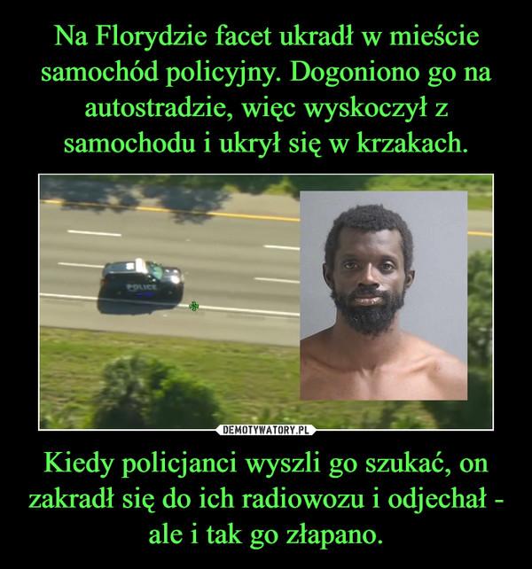 Kiedy policjanci wyszli go szukać, on zakradł się do ich radiowozu i odjechał - ale i tak go złapano. –