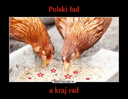 Polski ład a kraj rad