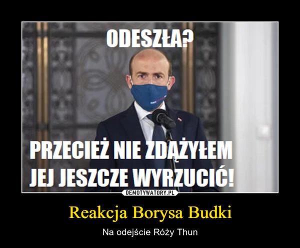 Reakcja Borysa Budki – Na odejście Róży Thun