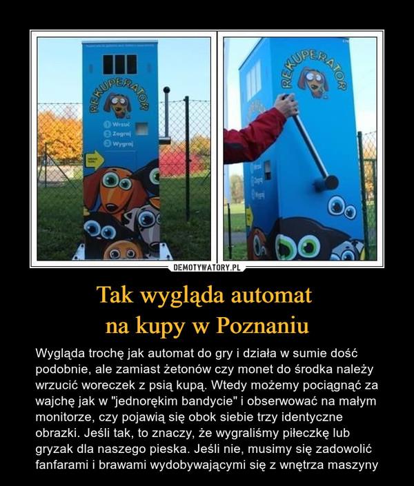 """Tak wygląda automat na kupy w Poznaniu – Wygląda trochę jak automat do gry i działa w sumie dość podobnie, ale zamiast żetonów czy monet do środka należy wrzucić woreczek z psią kupą. Wtedy możemy pociągnąć za wajchę jak w """"jednorękim bandycie"""" i obserwować na małym monitorze, czy pojawią się obok siebie trzy identyczne obrazki. Jeśli tak, to znaczy, że wygraliśmy piłeczkę lub gryzak dla naszego pieska. Jeśli nie, musimy się zadowolić fanfarami i brawami wydobywającymi się z wnętrza maszyny"""