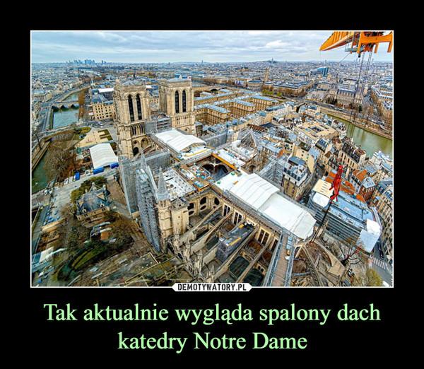 Tak aktualnie wygląda spalony dach katedry Notre Dame –