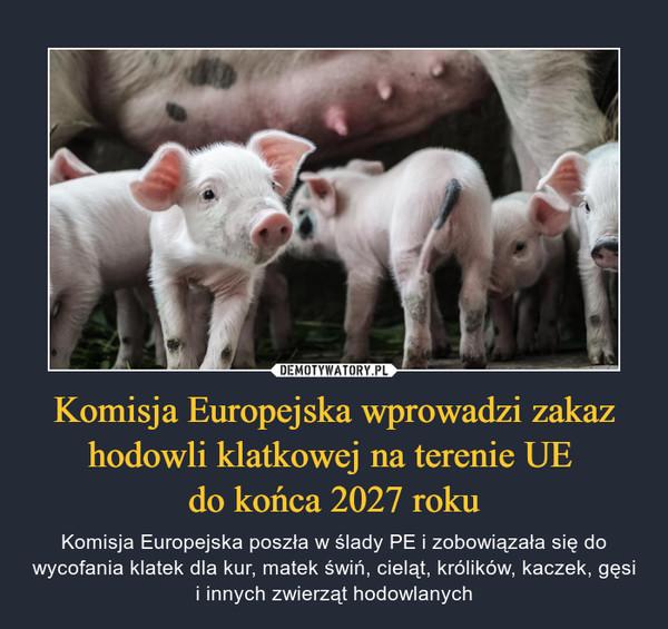 Komisja Europejska wprowadzi zakaz hodowli klatkowej na terenie UE do końca 2027 roku – Komisja Europejska poszła w ślady PE i zobowiązała się do wycofania klatek dla kur, matek świń, cieląt, królików, kaczek, gęsi i innych zwierząt hodowlanych