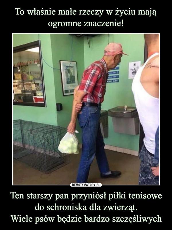 Ten starszy pan przyniósł piłki tenisowe do schroniska dla zwierząt.Wiele psów będzie bardzo szczęśliwych –