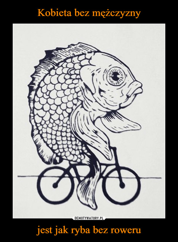 jest jak ryba bez roweru –