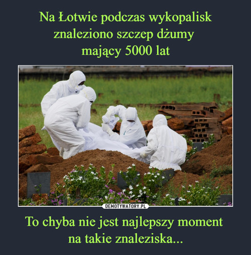 Na Łotwie podczas wykopalisk znaleziono szczep dżumy  mający 5000 lat To chyba nie jest najlepszy moment  na takie znaleziska...