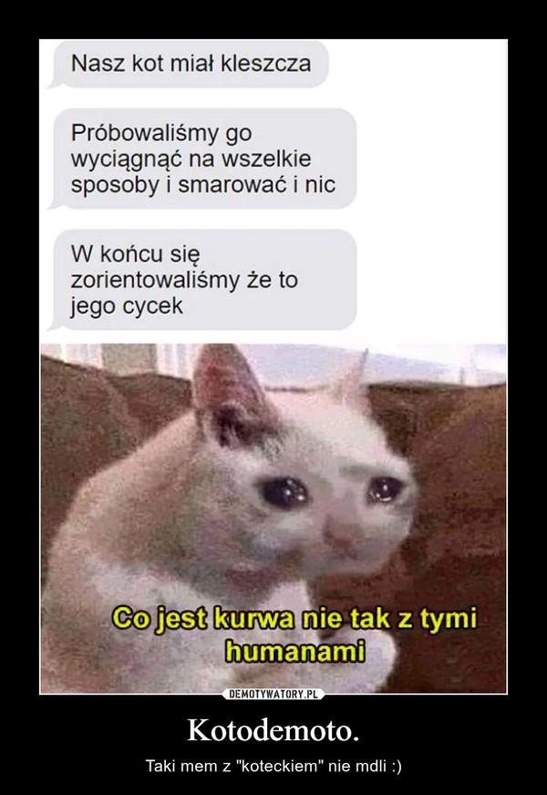 """Kotodemoto. – Taki mem z """"koteckiem"""" nie mdli :)"""