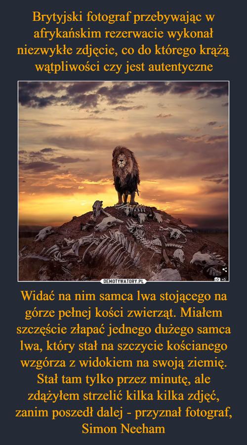 Brytyjski fotograf przebywając w afrykańskim rezerwacie wykonał niezwykłe zdjęcie, co do którego krążą wątpliwości czy jest autentyczne Widać na nim samca lwa stojącego na górze pełnej kości zwierząt. Miałem szczęście złapać jednego dużego samca lwa, który stał na szczycie kościanego wzgórza z widokiem na swoją ziemię. Stał tam tylko przez minutę, ale zdążyłem strzelić kilka kilka zdjęć, zanim poszedł dalej - przyznał fotograf, Simon Neeham