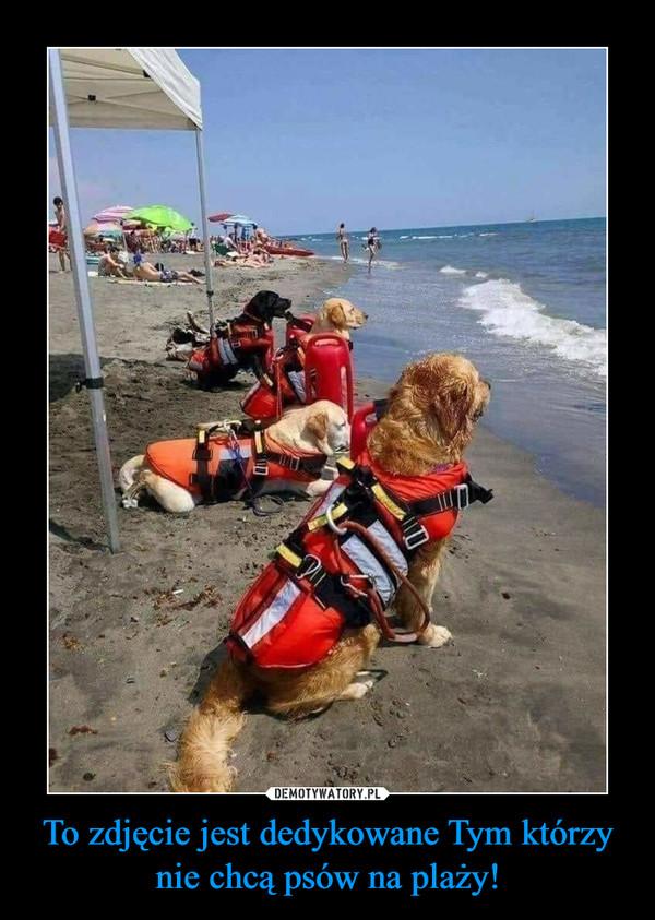 To zdjęcie jest dedykowane Tym którzy nie chcą psów na plaży! –