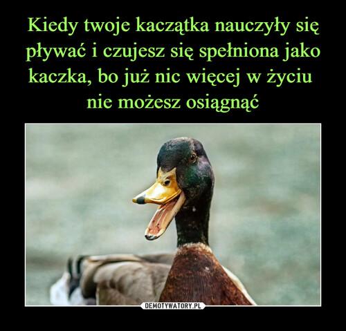 Kiedy twoje kaczątka nauczyły się pływać i czujesz się spełniona jako kaczka, bo już nic więcej w życiu  nie możesz osiągnąć