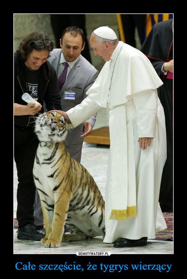 Całe szczęście, że tygrys wierzący –