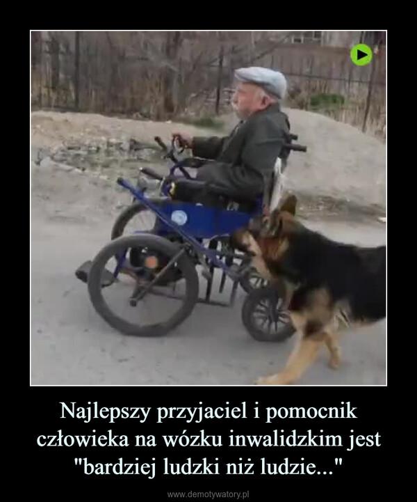 """Najlepszy przyjaciel i pomocnik człowieka na wózku inwalidzkim jest """"bardziej ludzki niż ludzie..."""" –"""
