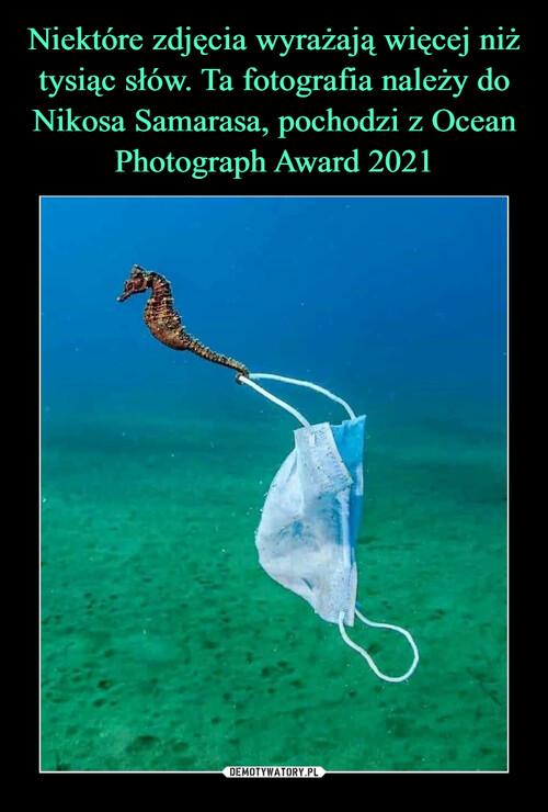 Niektóre zdjęcia wyrażają więcej niż tysiąc słów. Ta fotografia należy do Nikosa Samarasa, pochodzi z Ocean Photograph Award 2021