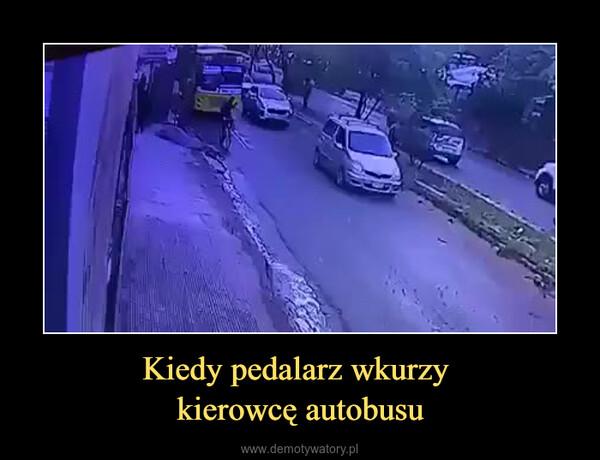 Kiedy pedalarz wkurzy kierowcę autobusu –