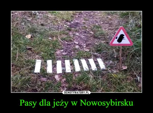 1536581283_0jkvaw_600.jpg